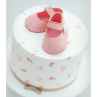 Baby Shoes on a Hand Painted Cake