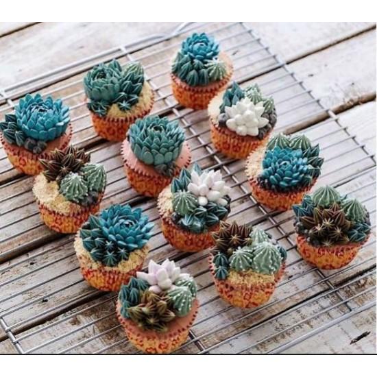 Trending Succulent Cupcakes